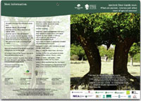 Woodland Trust Ancient Trees Guide